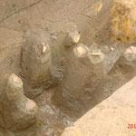 土器の破片(北東第2調査区)