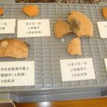 今回の調査で収集した「土器」類
