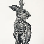 Jackalope, Available in the SHOP