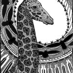 Giraffe, Available in the SHOP