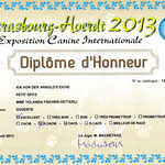 CACIB Hoerdt France 2013: ex.1 CACS / RCACIB Judge M. Machetanz, Germany