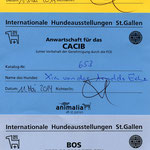 CACIB St. Gallen 2014: ex. 1 CAC / CACIB / BOS Judge M. L. Mende, Germany