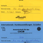 CACIB St. Gallen 2013: ex.1 CAC / CACIB Judge Mr. D. Smith, Australia