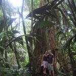 Meike und Marvin im Urwald