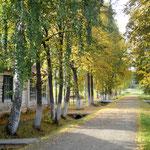 Herbst im GULAG
