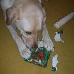 Lucy macht ihr Geschenk auf