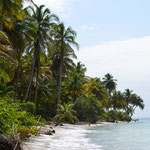 In Bocas del Toro.
