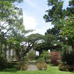 La Parroquia in Cartago: Die 1575 gebaute Kirche wurde 1910 bei einem Erdbeben zerstört, heute befindet sich in der Ruine ein Garten.