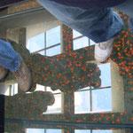 Mohnblumen im WWI Museum