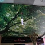 toile imprimée de plafond