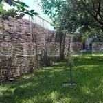 плетеный высокий забор