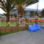 Плетёный забор на территории Олимпийского Парка