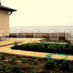 Плетеный забор из ивовой лозы