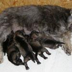 2 Tage nach der Geburt