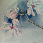 Magnolien - Aquarell