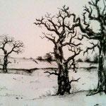 Bäume - Zeichnung