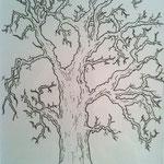 Baum - Zeichnung