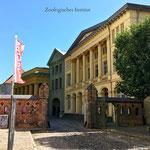 Zoologisches Institut