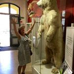Eisbär und ich