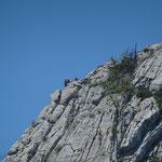 Grimpeur au Roc des Boeufs