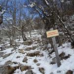 Montée au col des Sauts par le côté Sud (Bois Quémont)
