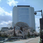 事務所建物の前から高崎市役所を臨む2