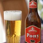 Eichhof Pony