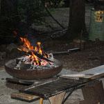Feuerstelle bei der Waldhütte