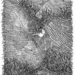 2011, 20x30, Federzeichnung, Foto: Georg Thuringer