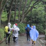 鴨池公園で降り始め雨合羽着用してウォーキング