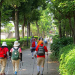 荏田南中学校横の日蔭を歩く