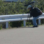 鶴見川沿いでは翡翠を狙っている写真愛好家に会う。本日は翡翠に会えなかったとの由
