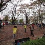 市が尾第三公園も紅葉で綺麗