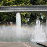 昼食会場の和田倉噴水公園、綺麗な虹が!!!