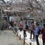 瑞雲禅寺で参拝