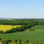 im Hintergrund die Windkraftanlagen bei Grapzow