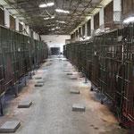 """Bear Farm"" à Hanoï, Viêtnam"