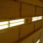小学校廊下天井