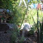 Tuteur/étiquette pour jardin