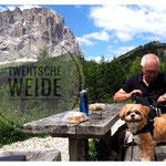 Boomer hondjes op vakantie tibet gebergte
