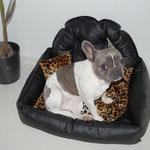 Emma und ihr neues Leo-Leder-Hundebettchen. ^^