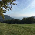 Aussicht vom Herzberg Richtung Aarau