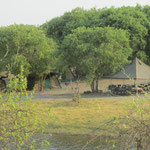 Zicht op ons kamp, Savuti gebied - Chobe National Park