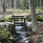 Wasser für Clausthal-Zellerfeld, wo die Frau in'n Keller fällt