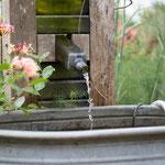 Wasser im Park der Gärten. Silke Lorenz