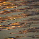 Wasser. Hans Katzenberger