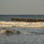 Am Strand von Nienhagen