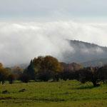 Nebelschawaden ziehen in die Hochrhön