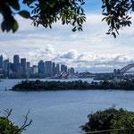 Blick vom Zoo über den Hafen von Sydney
