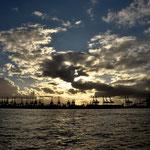 Der Containerhafen von Hamburg im Abendlicht